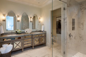 Old Naples Transitional Bathroom